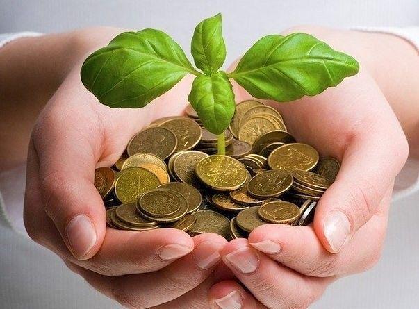 Лавровый лист как необходимый ингредиент в магии для любви работы денег